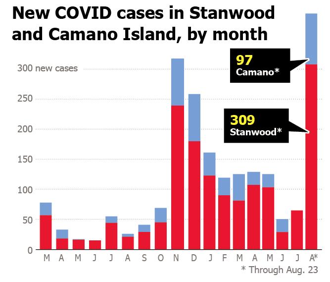 Local covid cases