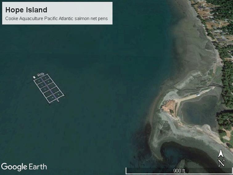 Hope Island farm