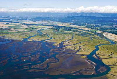 Island Unit Skagit River Delta