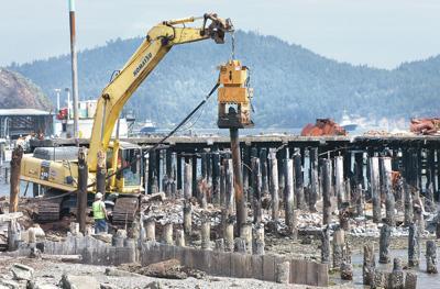 Fidalgo Bay cleanup begins