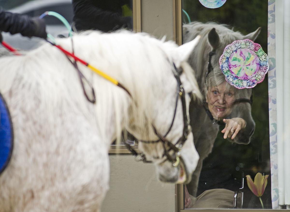 Warm Beach Horse tour, 4.24.20
