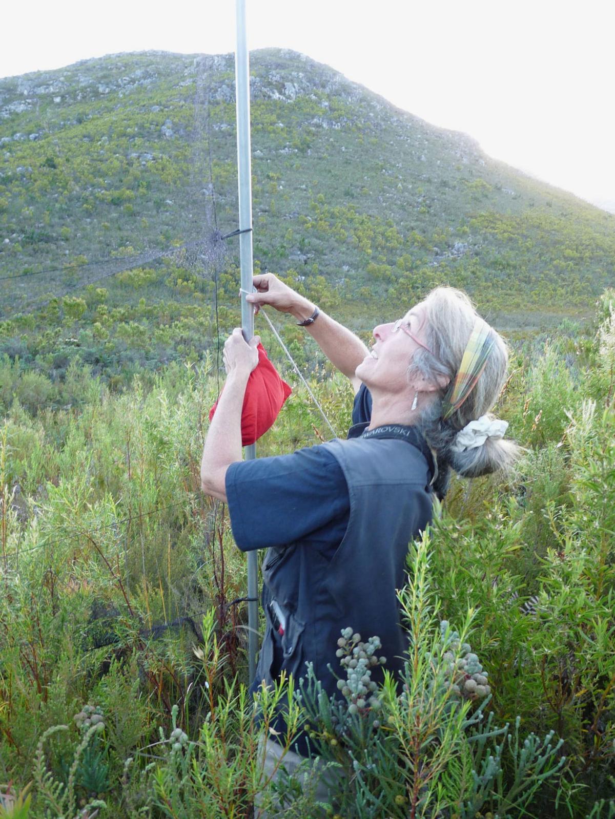 Anacortes based conservation organization closing
