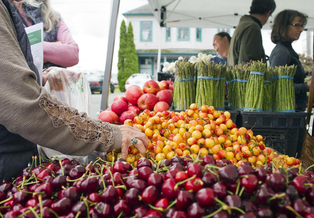 Stanwood Farmers Market, 6.7.19