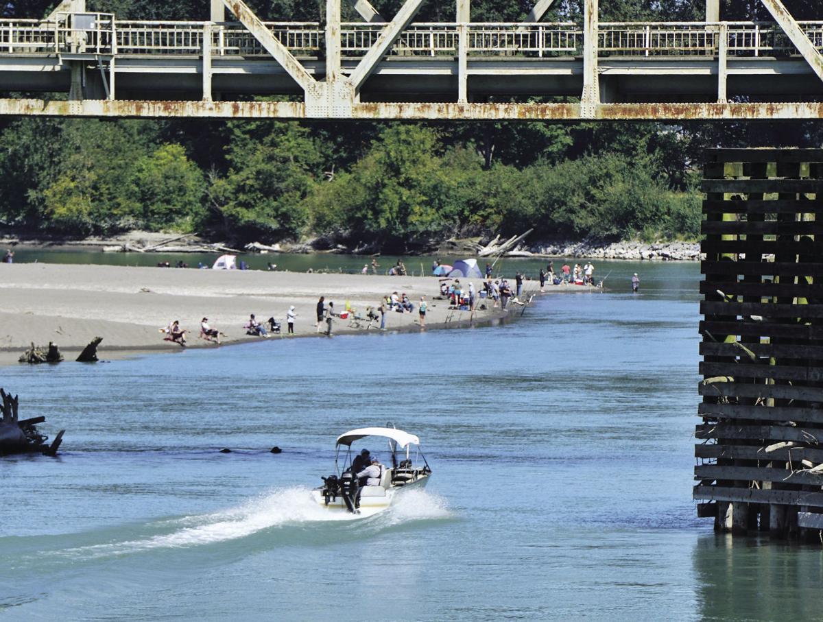 Humpy season Skagit River