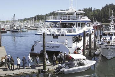 New commercial whale-watching rules to take effect in 2021