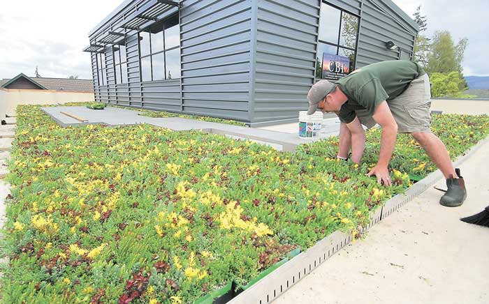 Rain garden trend growing in Skagit County | News | goskagit.com