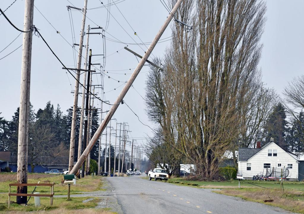 Strong winds topple trees, cause power outages in Skagit