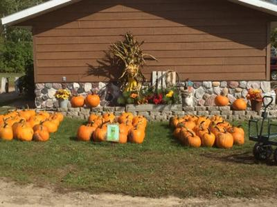 Cowhorn Crossing Pumpkin Patch offers family-friendly activities