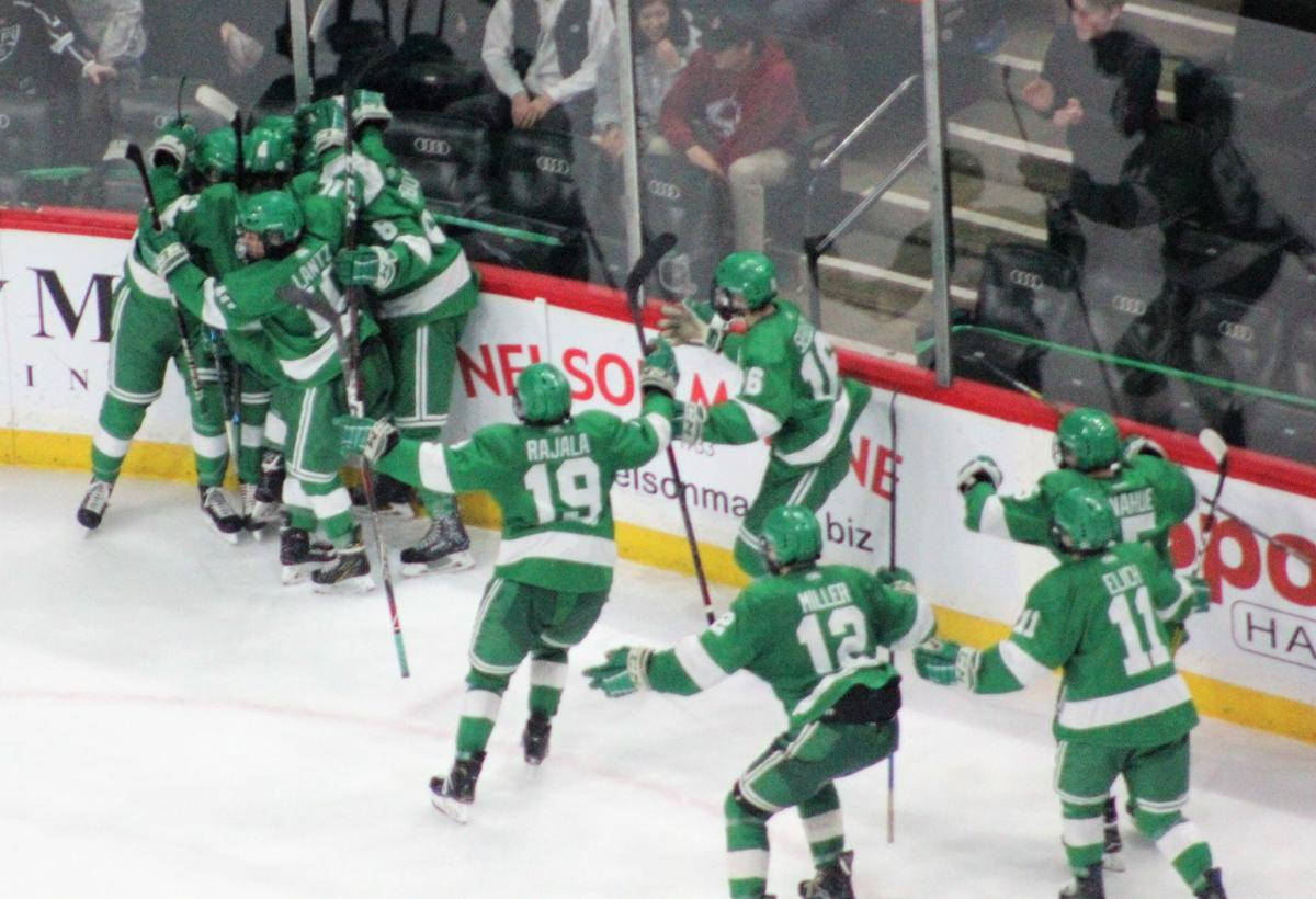Greenway hockey