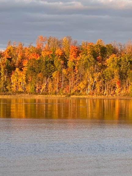 Deer Lake Mary Shideler