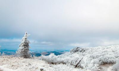 Meteorologists: 'Uncertain Track' For Winter Weather