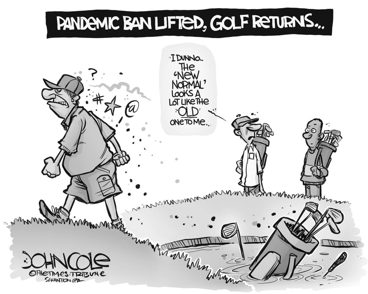 The New Old Normal Editorial Cartoons Greenevillesun Com