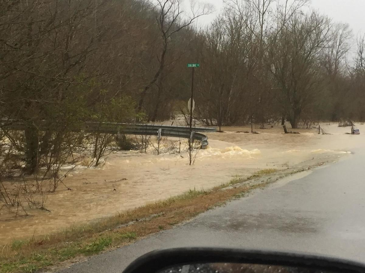 Roaring Fork and Collins Road