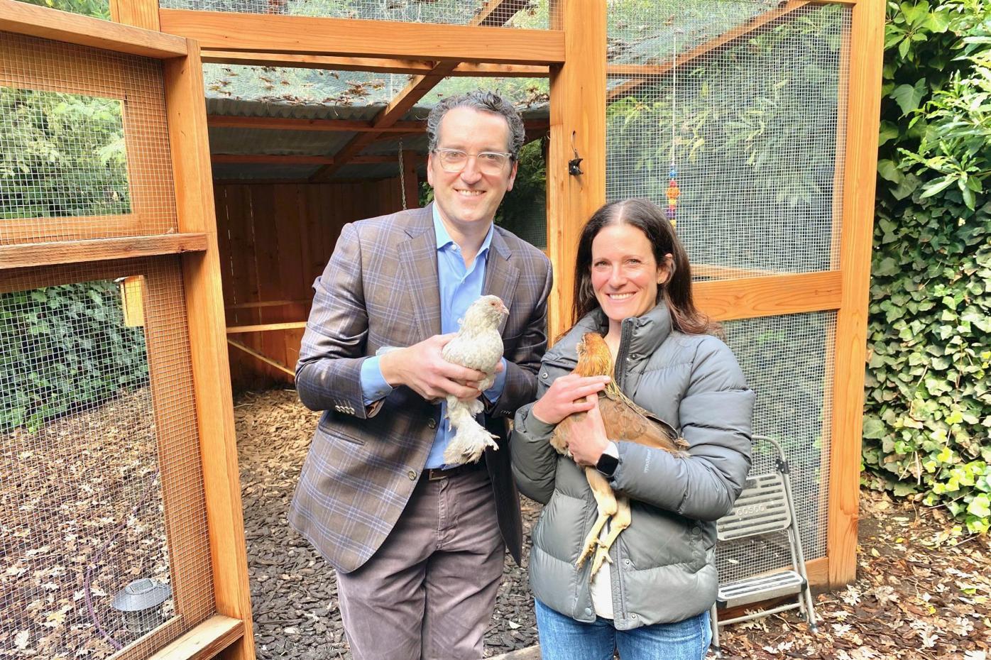 Virus Outbreak Backyard Chickens
