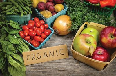 organiccrop - 1.jpg
