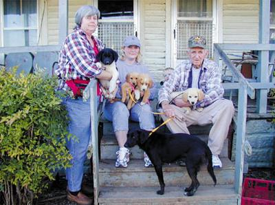 Dog That Rescued County Man Now Has Puppies For Adoption