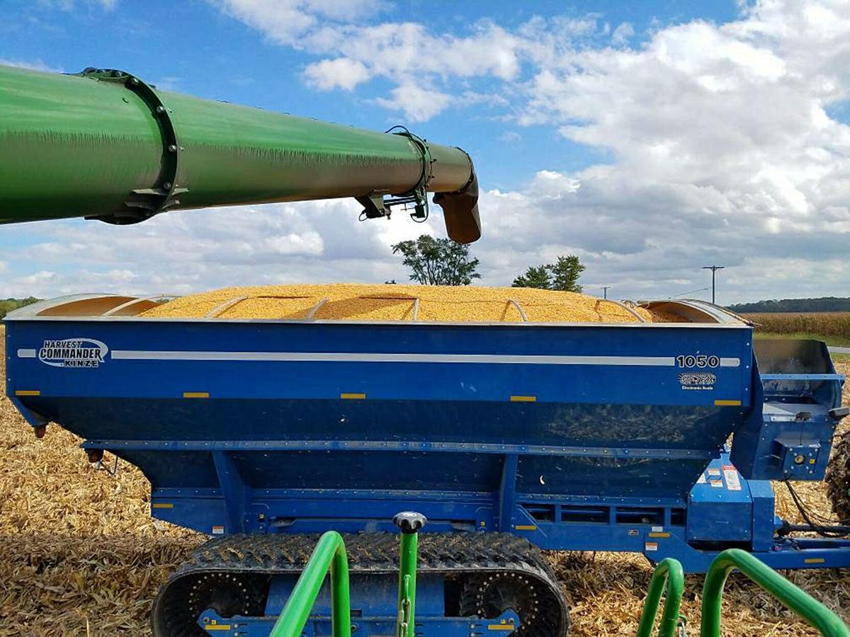 Boundiful Harvest.jpg