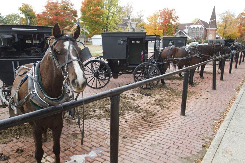 Messy issue of horse manure divides Amish, neighbors | News