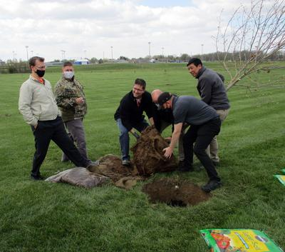 GECOM tree planting