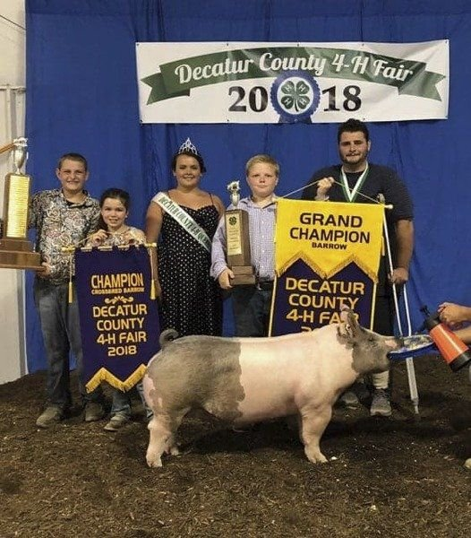 2018 Swine Show Results Decatur County Fair | Local News