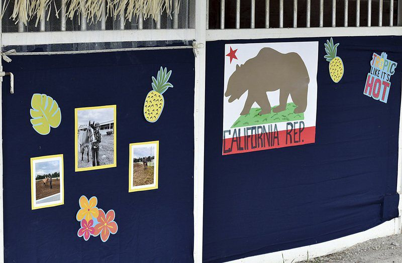 Scenes from the Decatur County 4-H Fair