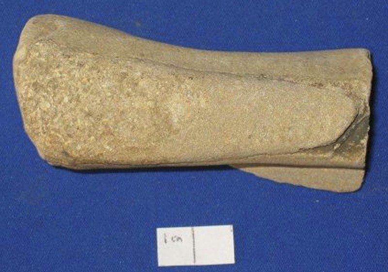 Resident paleontologist explains Indiana fossils   Local