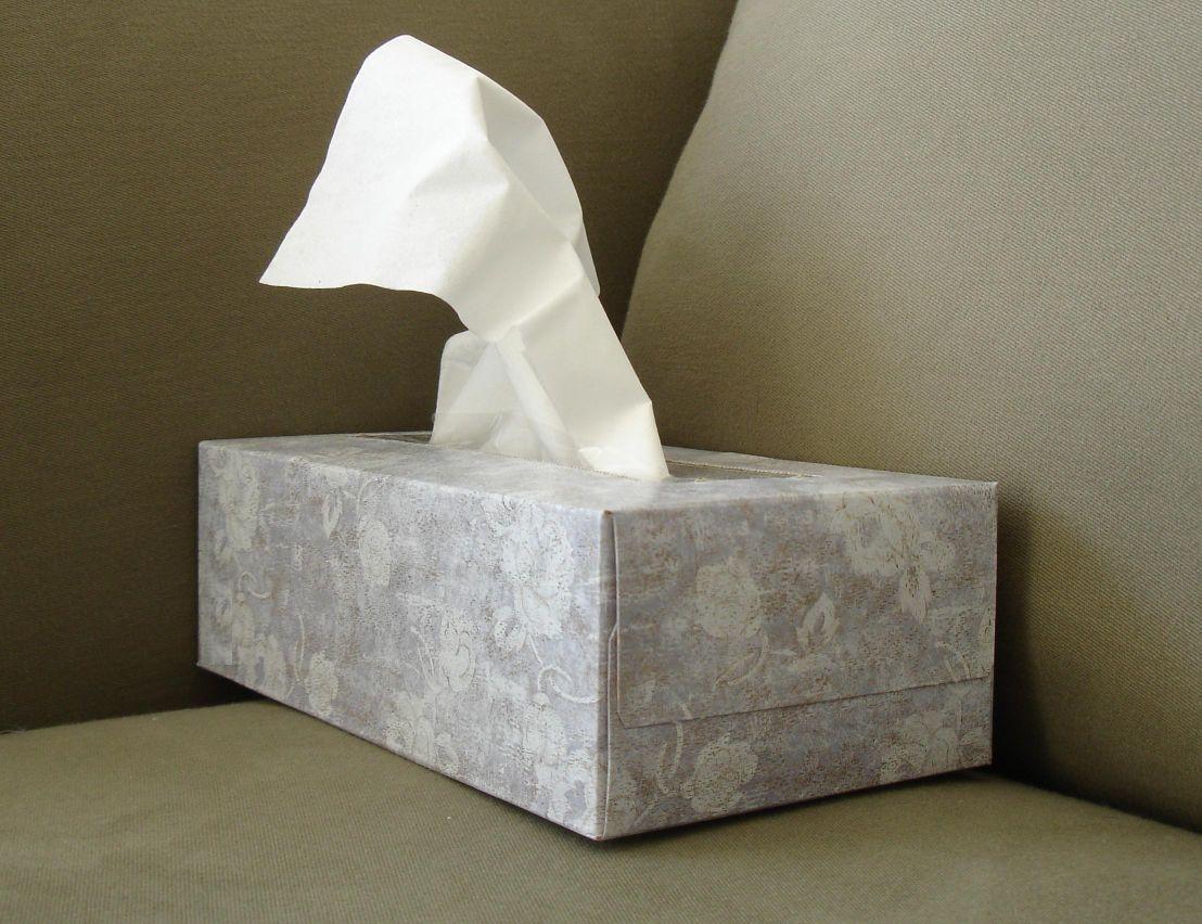 tissue-davidlat.jpg