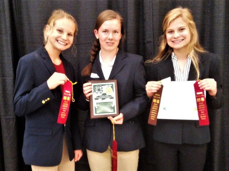 NDHS Horse and Pony teams place in top three at state
