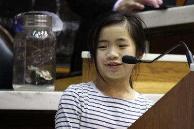 Firefly bill lights up committee hearing