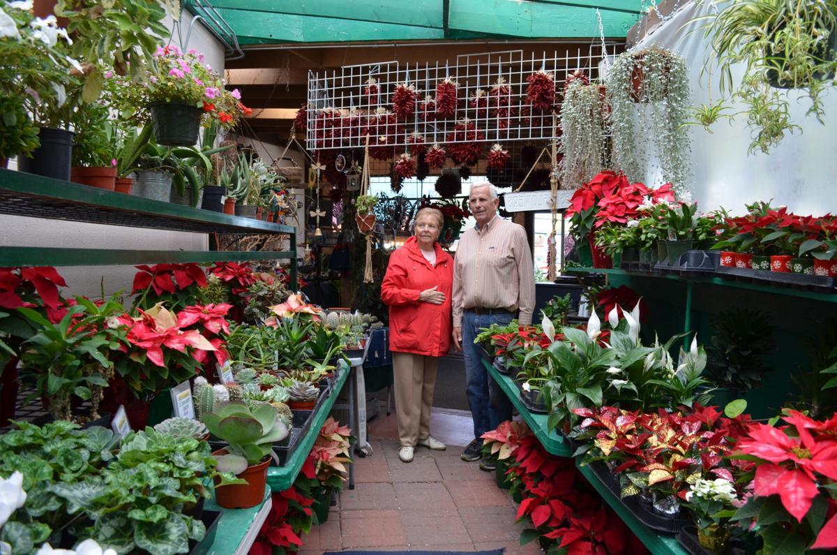 GV Gardeners: Colorful plants help create holiday memories