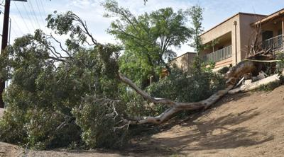 Rare Storm Pounds Sahuarita Green Valley Sees Less Action Local