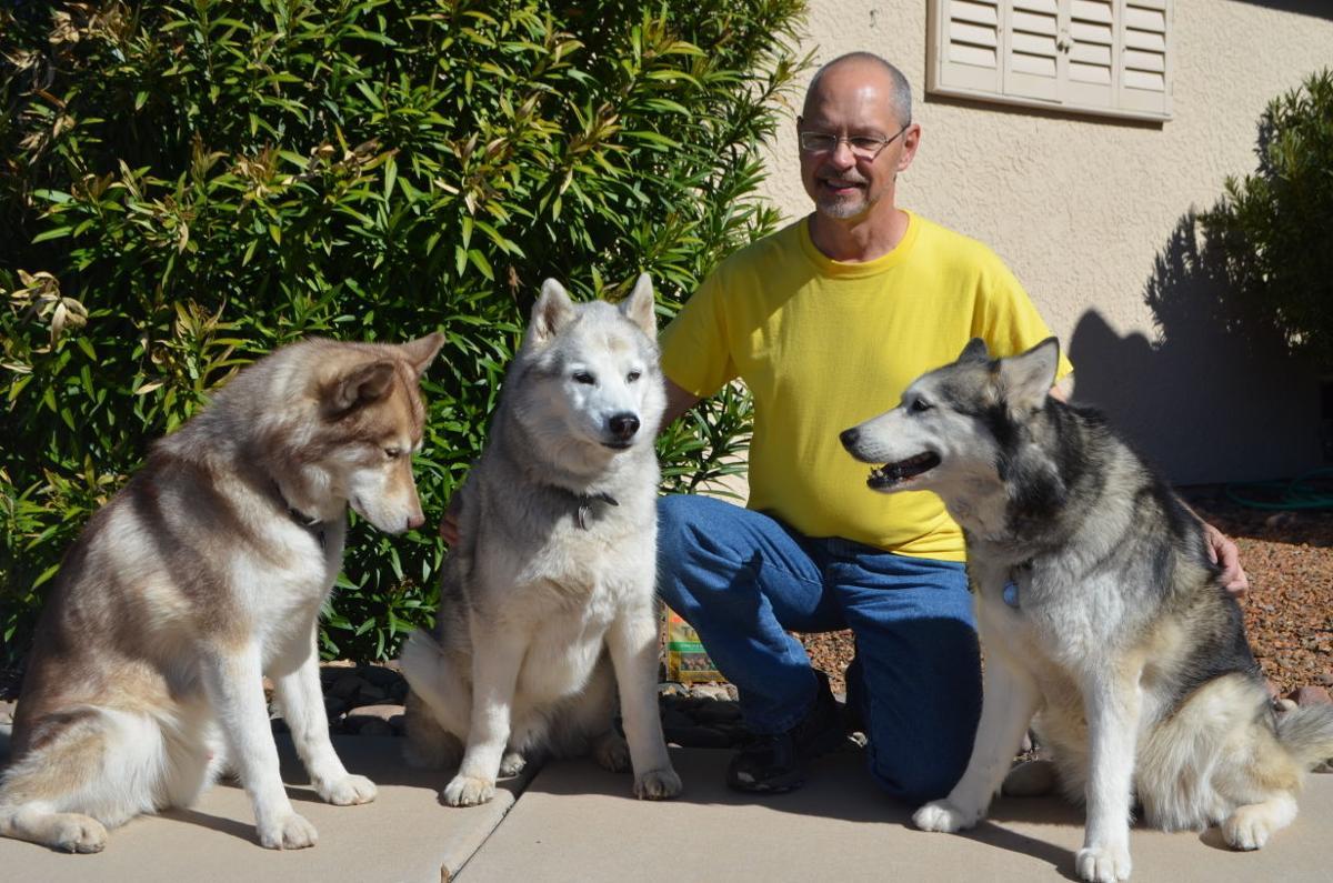 Madera Canyon Dog Show