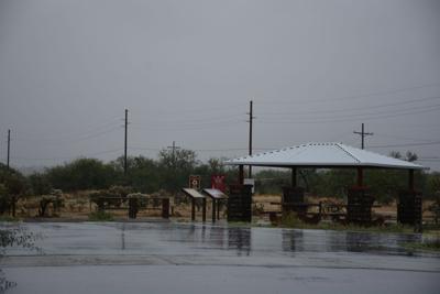 Rainy morning (copy)