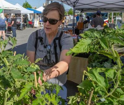 SNAP dollars can now be used at Green Valley farmers market