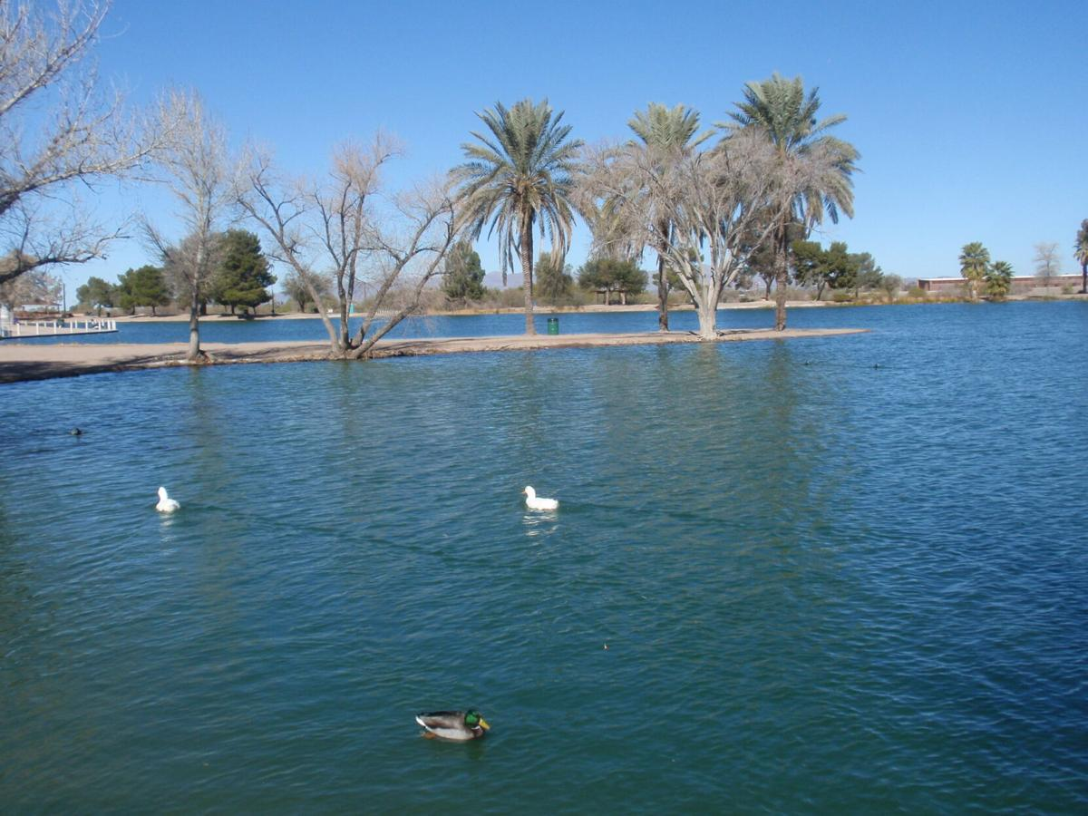 Travels with Two Sisters: Visiting watery desert oases