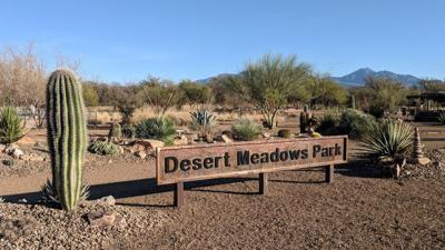 Volunteer Corner: Finding respite at beautiful local park