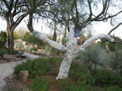 GV Gardeners: Great tips for gardening in cool December