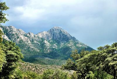 view from madera canyon