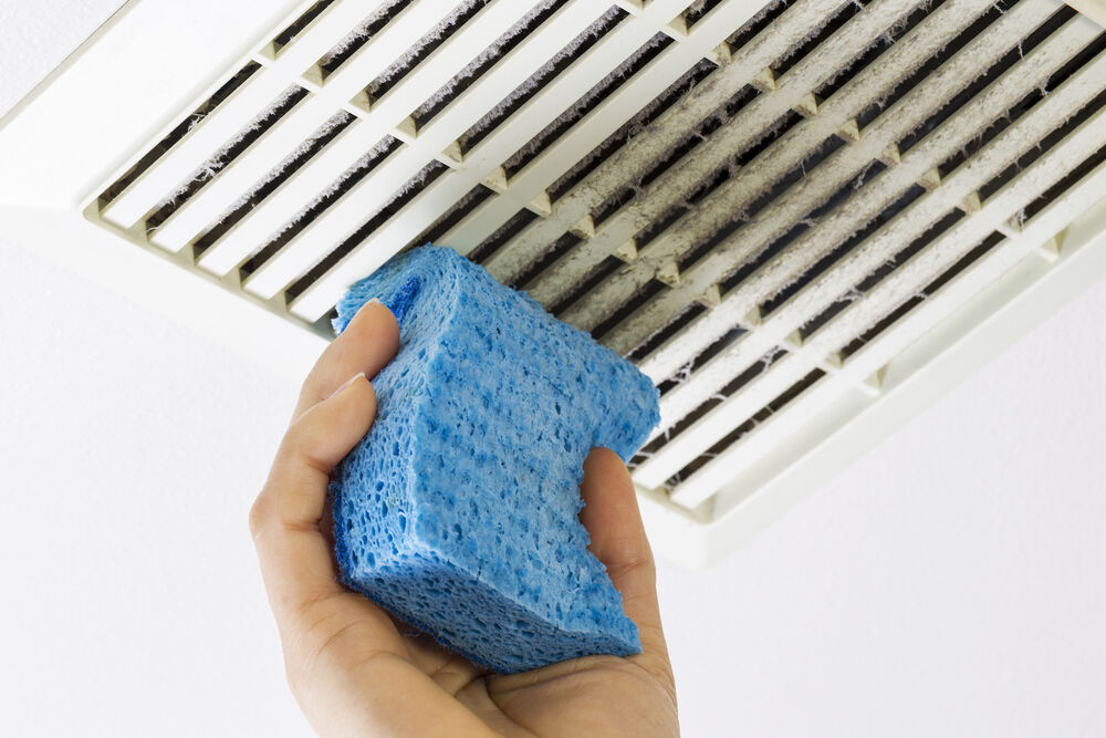 Rosie on the House: Clean, replace filters for better air quality