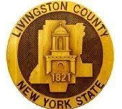 Livingston Logo