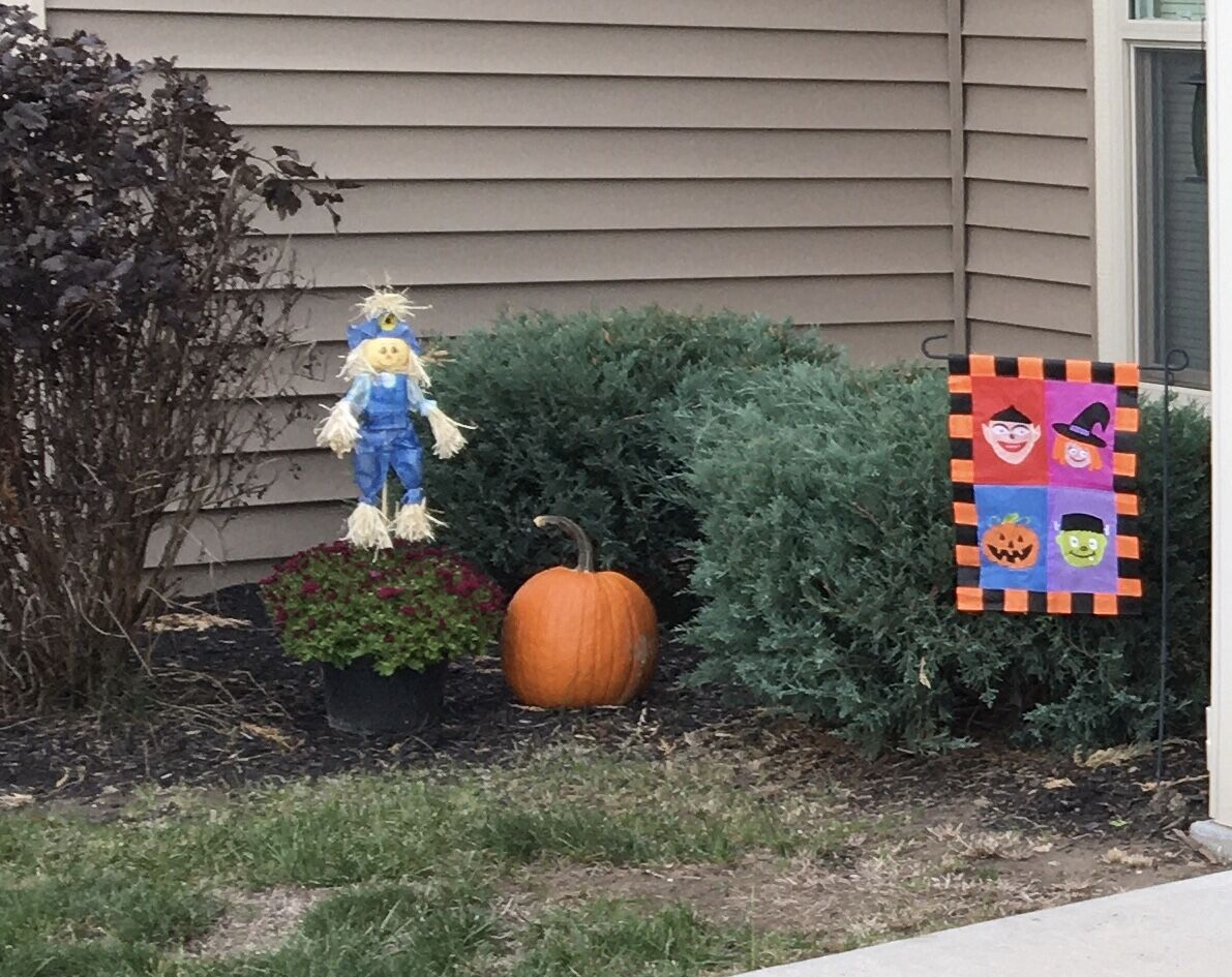 This scarecrow is holding down the mums in the wind!
