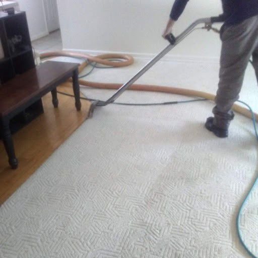 Joey T's Carpet Cleaning & Water Restoration: Business in your Community