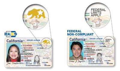 At Id Issue Hanfordsentinel Dmv The Real com Local