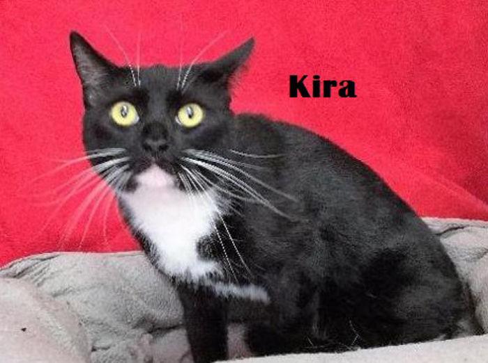 Take me home Kira