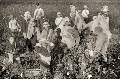 Remember When: Picking cotton