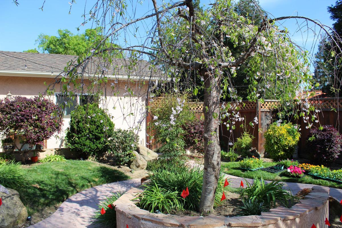 Gardeners: Pagel garden