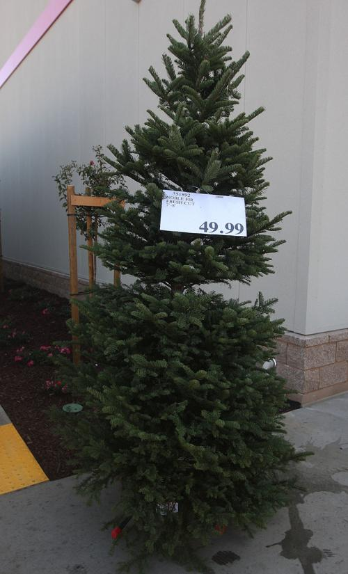 Costco Ideas For Holiday Shopping