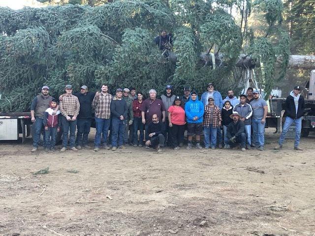 2019 Tree Trek group Pic.jpg