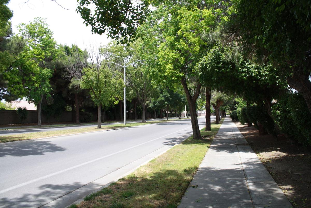 Fox street before
