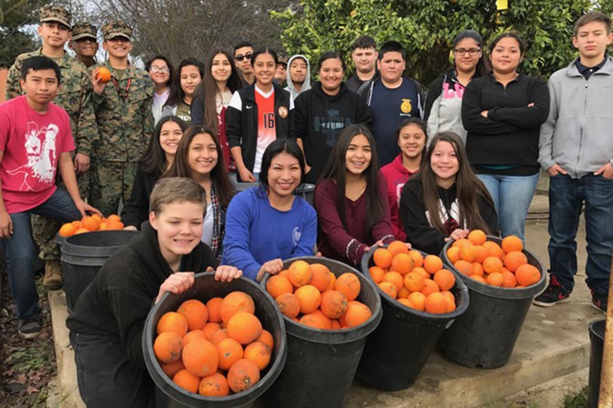 School farm: Harvesting